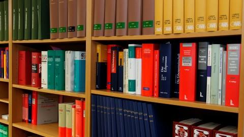bookcase-335849_1920